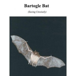 Bartogle Bat Cover