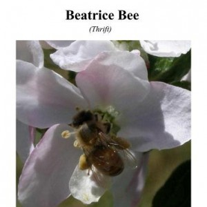 Beatrice Bee Cover2