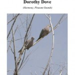 Dorothy Dove cover