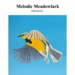 Melodie Meadowlark Cover2