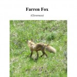 Farren Fox Cover