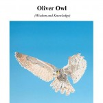 Oliver Owl Cover_Page_1