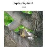 Squire Squirrel Cover